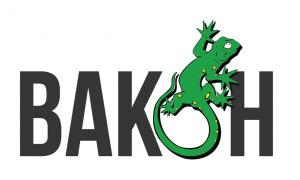 Лого на издателство Вакон